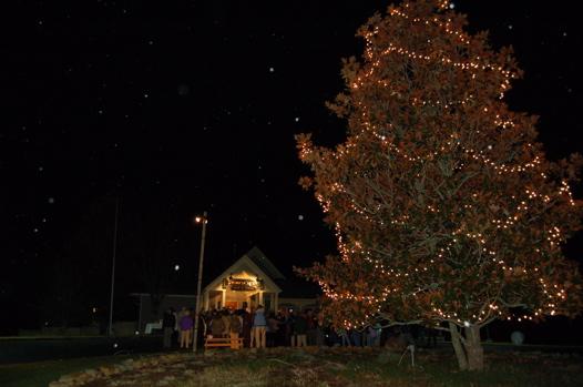 SC Tree Lighting