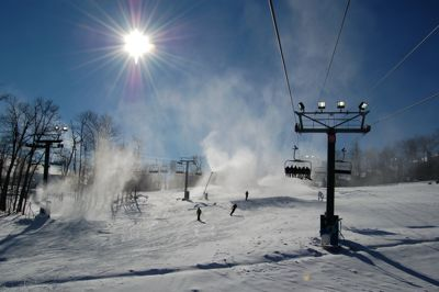 Snow Mist Wintergreen