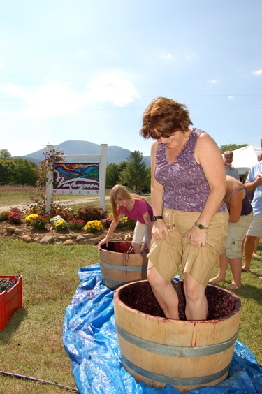 DATEBOOK : NELLYSFORD / BEECH GROVE : Wintergreen Winery Annual Romp, Stomp & Chomp 8-30 & 8-31