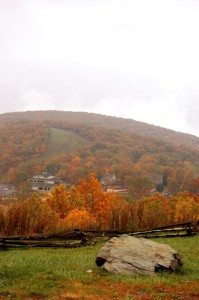 Fall colors are changing up at Wintergreen just in time for this weekend's Fall Foliage Festival at The Wintergreen Nature Foundation.