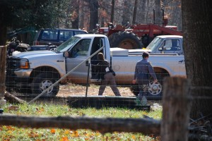 A Nelson County Sheriff Deputy searches a truck believed to have been driven by the suspect.