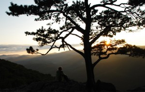 Photo By Ann Strober : ©2009 www.nelsoncountylife.com : Viewing a late summer's sunset from the Blue Ridge Parkway in Nelson County, Virginia. : Click photo to enlarge.