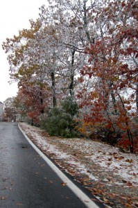 ©2009 www.nelsoncountylife.com : What's left of an early Sunday morning snow along Blue Ridge Drive at Wintergreen Resort, Virginia