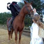 MountainSide Petting Farm Trick-or-Treat : 10.31.09 : 5-7 PM