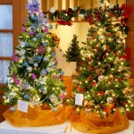 Wintergreen Nature Foundation's Festival Of Trees Begins : 11.21.09