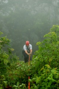 A squad member scales the overgrown, slick and steep face of the mountainside below Rock Point Overlook.