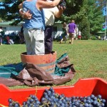 Labor Day Weekend Events Continue