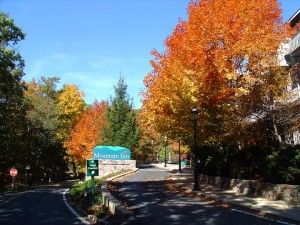 Photo Courtesy of Wintergreen Resort : Beautiful fall colors are appearing in the mountains of Nelson County. This shot was taken just outside the Mountain Inn at Wintergreen Resort. Click to enlarge.