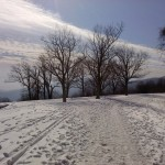 Beautiful And Snow Covered On The Blue Ridge Parkway