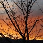 Winter Sunset In Nelson