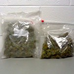 Nelson Sheriff Makes Pot Bust After 151 Traffic Stop