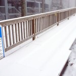 Late March Snow Hits Nelson - In Your Pictures