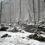 Nelson: Snowfall In Parts Of The Blue Ridge