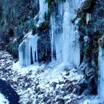 Ice Show Along The Blue Ridge Parkway