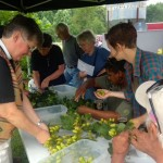 Devils Backbone Brewing Donates Hops To Grace Episcopal In Massies Mill