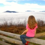 For Most Saturday Was A Cloudy, Dreary, Misty Day - But Not Everyone!