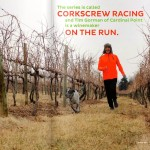 Nelson: WineLovers 5K This Saturday March 1st At Cardinal Point Vineyard & Winery