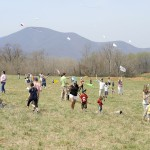Rockfish Valley Foundation Kite Festival 2014