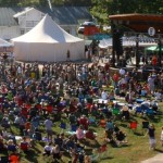 Nelson: 2015 Was Last Year For The Festy At Brewing Location
