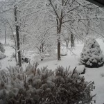 Thanksgiving Eve Snow Begins Across The Blue Ridge Area