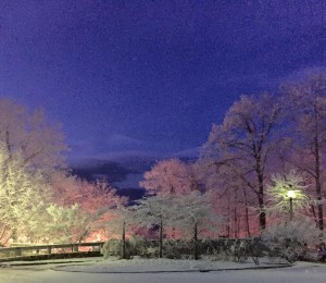 Photo By Diane Givens : A couple of inches of overnight snow at Wintergreen left this beautiful landscape as people began waking up Tuesday morning - January 27, 2015.