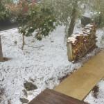 Winter's Last Stand?