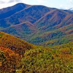 Fall Colors In Mountains Starting To Pop